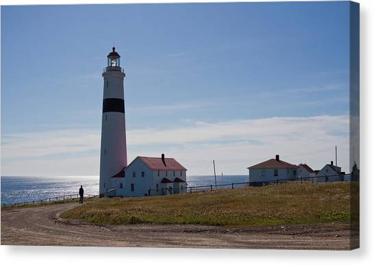 Lighthouse Labrador Canvas Print
