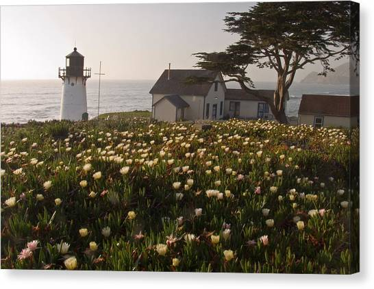 Lighthouse With A Blanket Of Wildflowers Canvas Print by George Oze