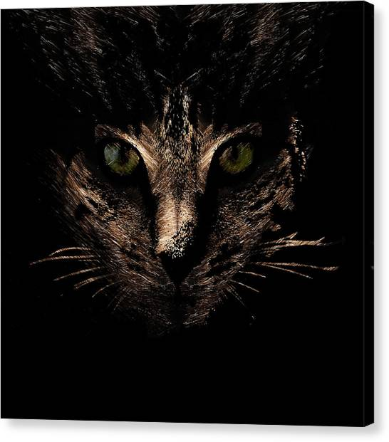 Canvas Print featuring the photograph Lighting by Helga Novelli