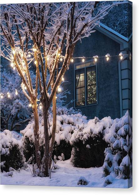 Lights And A Tree Canvas Print