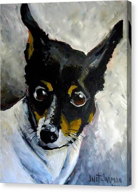 Lil Rat Terrier Canvas Print