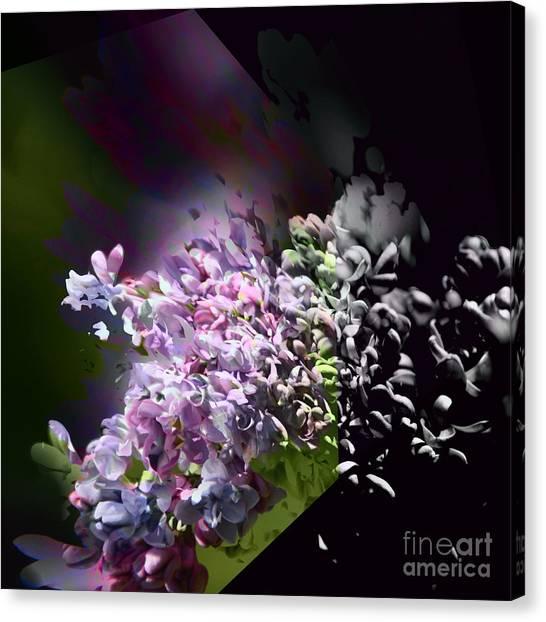 Lilac 2 Canvas Print