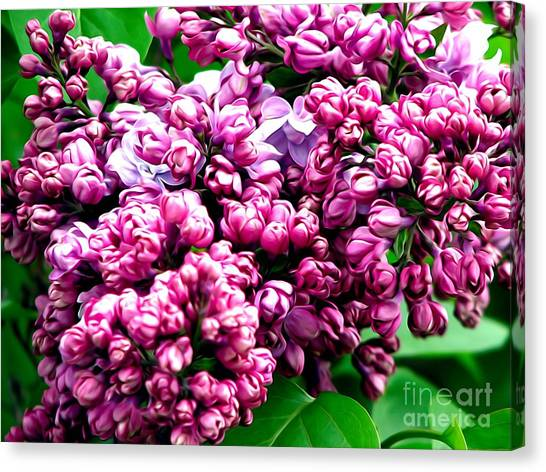Canvas Print featuring the photograph Lilac Blossoms Abstract Soft Effect 1 by Rose Santuci-Sofranko