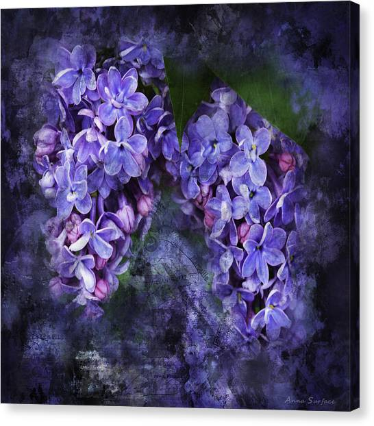 Lilacs Frenchy Scruff Canvas Print