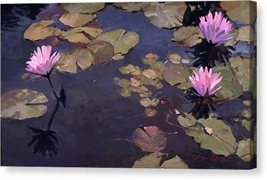 Lilies II - Water Lilies Canvas Print