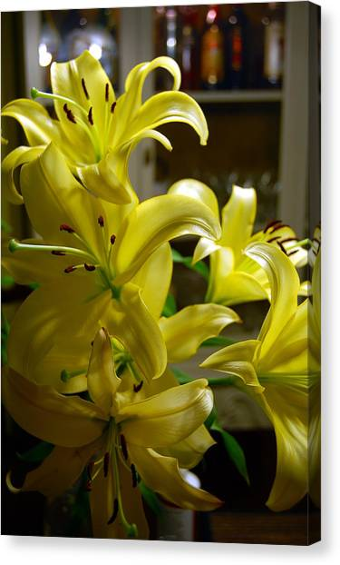 Lilies Canvas Print by Siobhan Yost