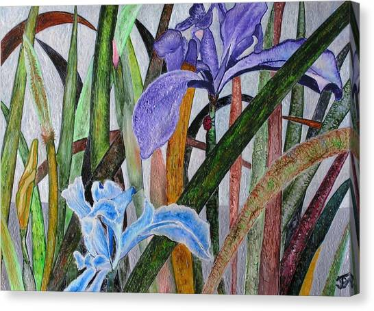 Lilly Canvas Print by John Vandebrooke