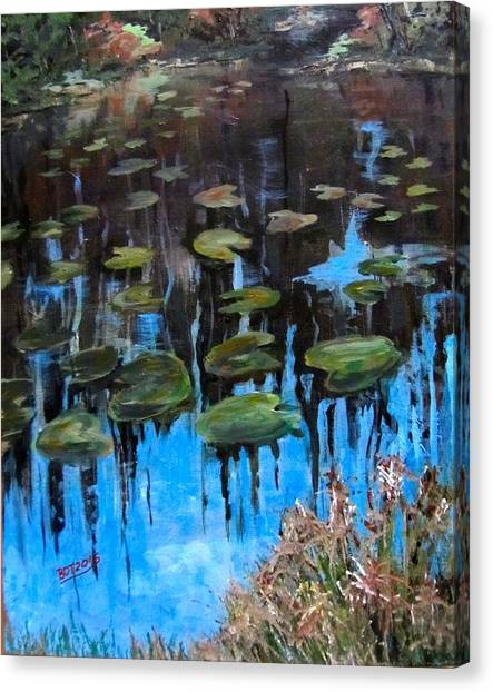 Lilly Pads And Reflections Canvas Print