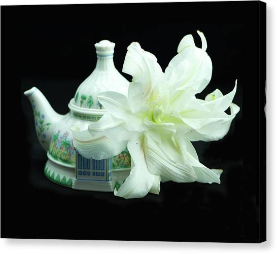 Lily And Teapot Canvas Print