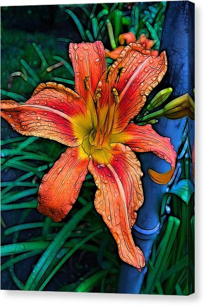 Lilies Canvas Print - Lily Bold by Nick Heap