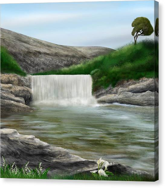 Lily Creek Canvas Print