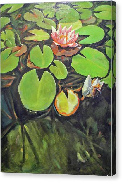 Canvas Print - Lily In The Water by Johannes Margreiter