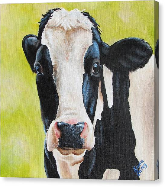 Cow Canvas Print - Lily by Laura Carey
