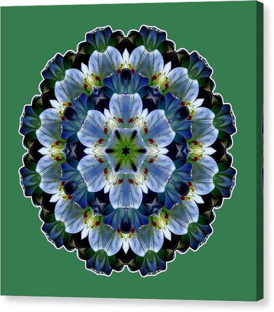 Lily Medallion Canvas Print