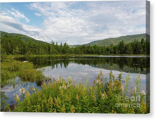 Canvas Print featuring the photograph Lily Pond - White Mountains, New Hampshire by Erin Paul Donovan