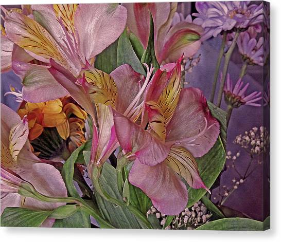 Lily Profusion 7 Canvas Print