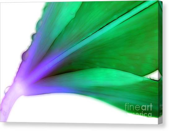 Abstract Lily Canvas Print - Lily Spirit by Krissy Katsimbras