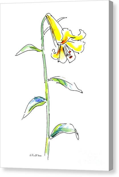 Lily Watercolor Painting 2 Canvas Print