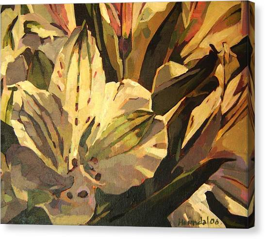 Lily White Canvas Print by Tim  Heimdal