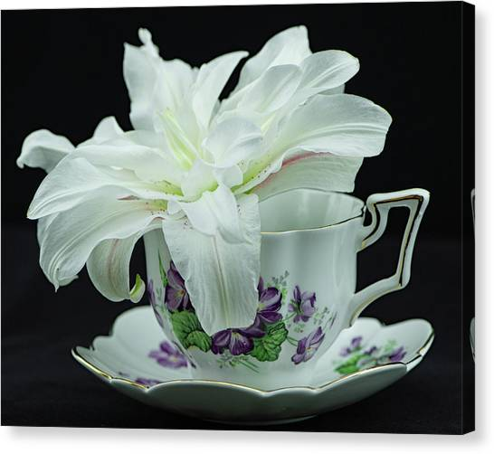 Lily With Teacup Canvas Print