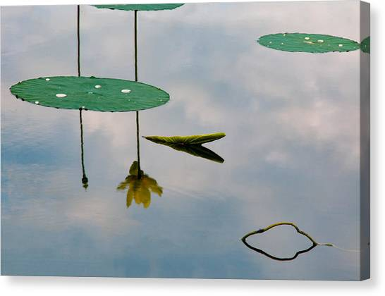 Lily's Reflection Canvas Print