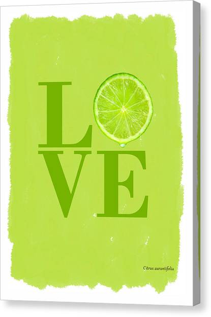 Fruit Canvas Print - Lime by Mark Rogan