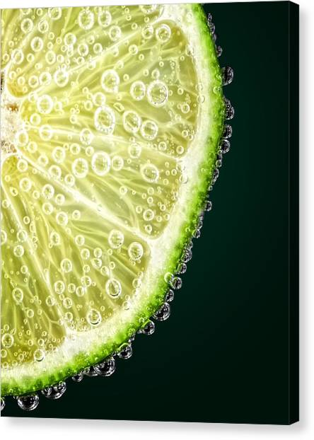 Lime Slice Canvas Print