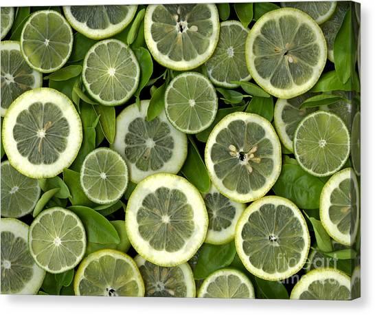 Green Canvas Print - Limons by Christian Slanec