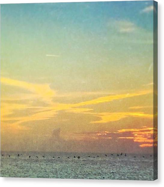 Large Birds Canvas Print - Line Of Pelicans At Sunset #coastalart by Joan McCool