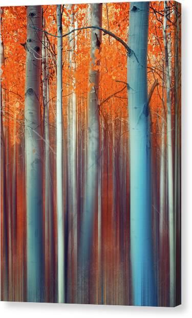 Lines Of Autumn Canvas Print