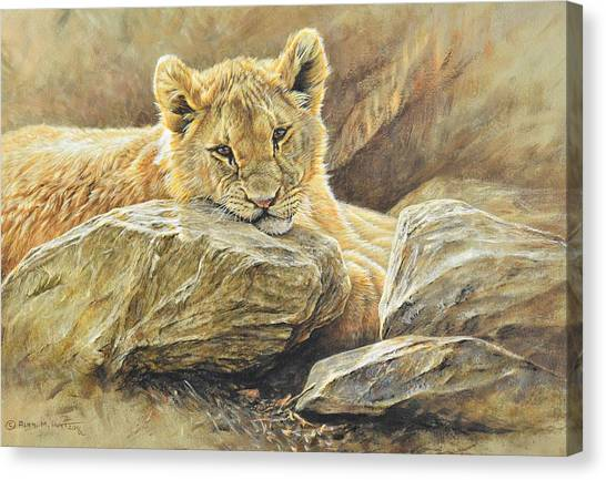 Canvas Print featuring the painting Lion Cub Study by Alan M Hunt