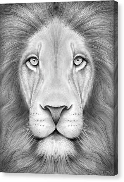 Kings Canvas Print - Lion Head by Greg Joens