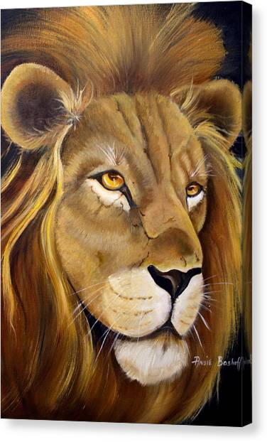 Lion Male Canvas Print by Ansie Boshoff