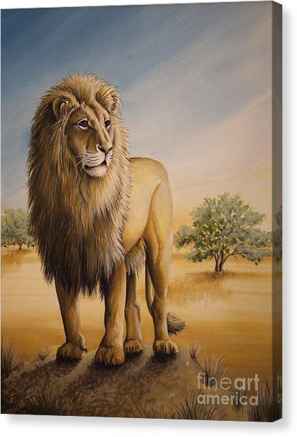 Lion Of Africa Canvas Print