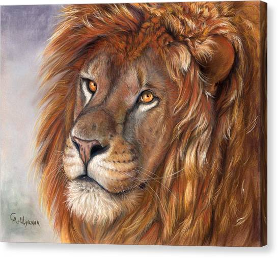 Lion Portrait Canvas Print by Svetlana Ledneva-Schukina