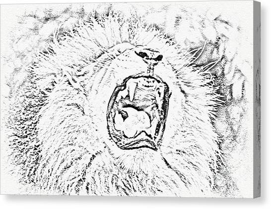 Lion Roar Drawing Canvas Print