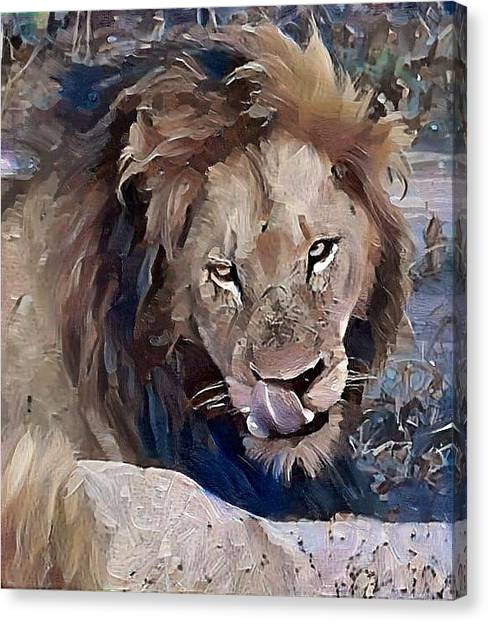 Lion With Tongue Canvas Print