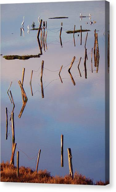 Liquid Assets Canvas Print