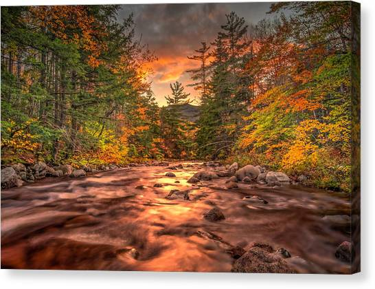 Liquid Gold Of New Hampshire Canvas Print