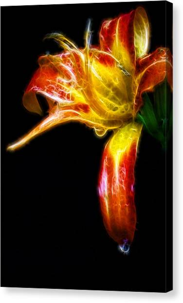 Liquid Lily Canvas Print