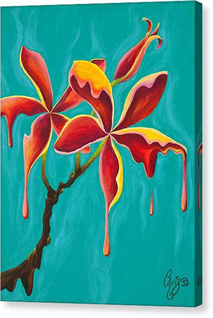 Liquidia Plumeria Canvas Print by Chris  Fifty-one