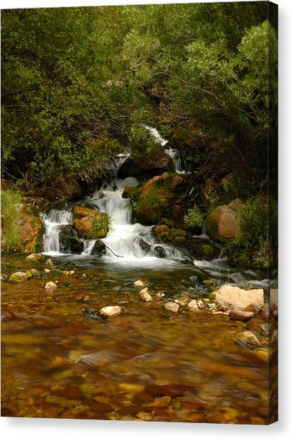 Little Big Creek Canvas Print