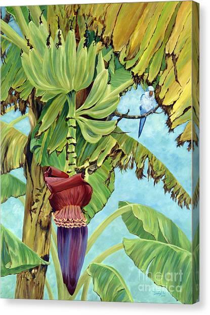Banana Tree Canvas Print - Little Blue Quaker by Danielle  Perry