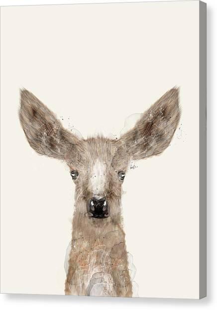 Cute Fawn Canvas Print - Little Deer Fawn by Bleu Bri
