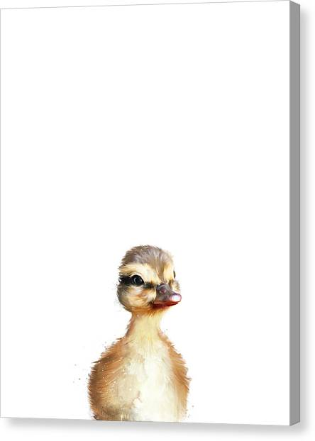 Animal Canvas Print - Little Duck by Amy Hamilton