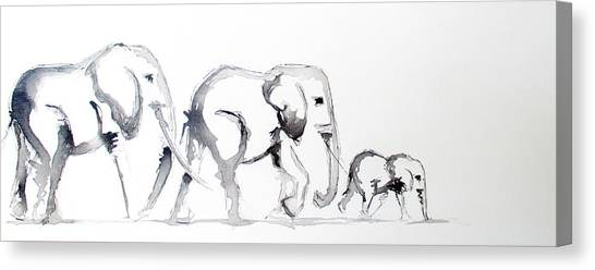 Little Elephant Family Canvas Print