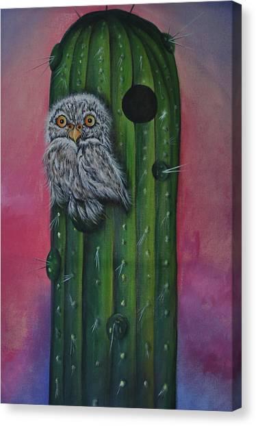 Little Elf Owl Canvas Print