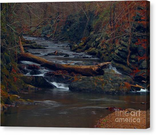 Little Falls Canvas Print