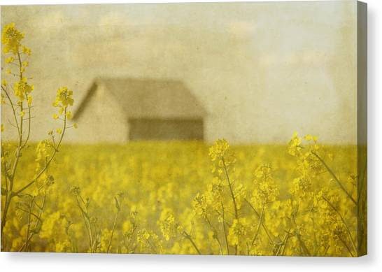 Yellow Canvas Print - Little House On The Prairie by Rebecca Cozart