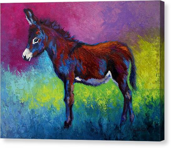 Donkeys Canvas Print - Little Jenny by Marion Rose